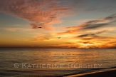 AlysBeach,FL_30A beaches_Katherine Hershey photography-26